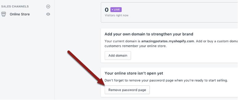 How to setup a shopify store - Go Public